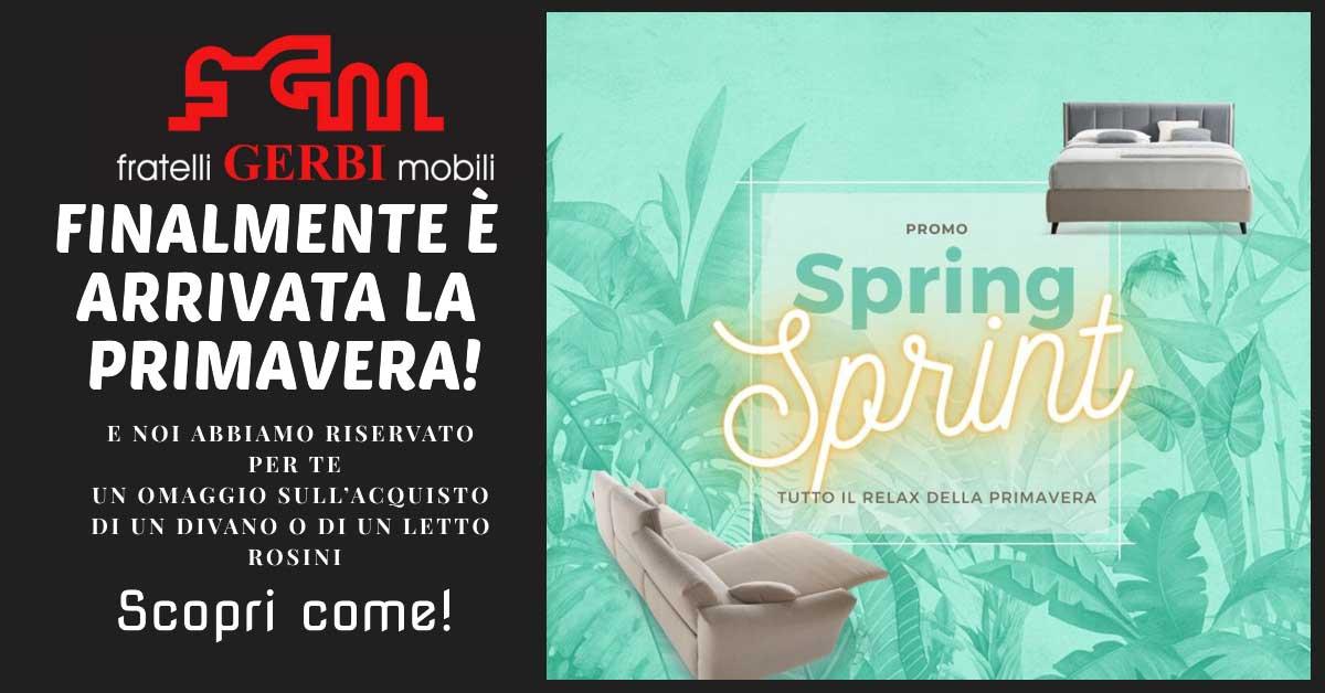 Read more about the article Promo Spring divani Rosini